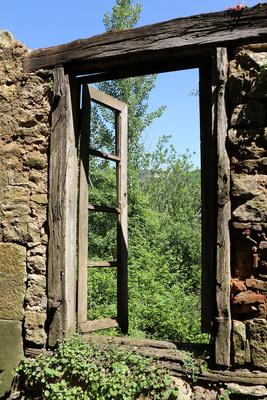 Fenster ins Grüne