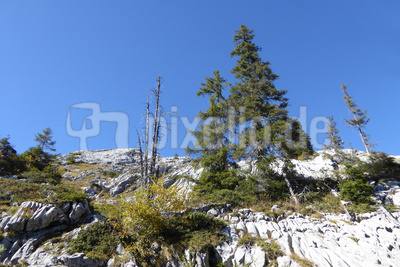 Herbstbeginn in den Bergen