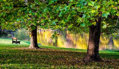 Herbstspiegel im Thalersee