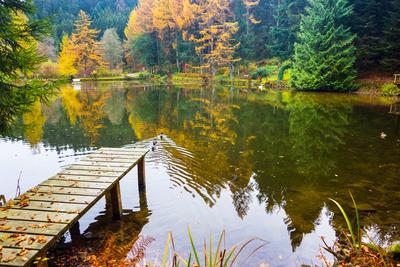 Schwarzwaldsee im Herbst