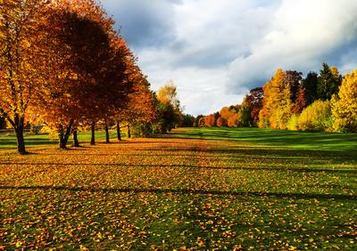 Herbstfarben mit Schräglicht