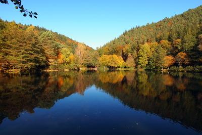 Herrlicher Herbsttag in der Pfalz