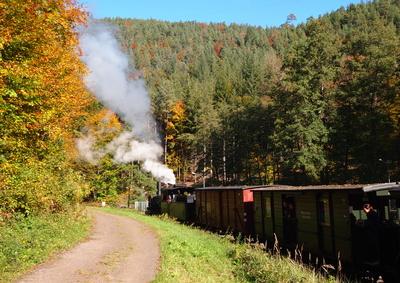 Mit der Dampflok im Pfälzer Wald unterwegs
