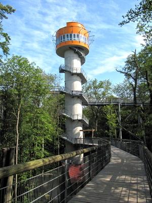 Turm des Baumkronenpfades