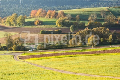 Herbstwiesen und Felder