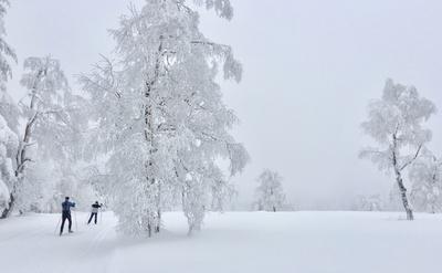Winterlandschaft mit Langlaeufern