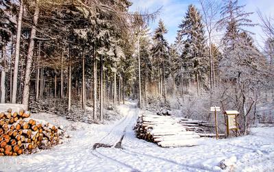 Erster Schnee vor Weihanchten