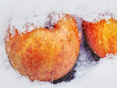 äpfel an eis