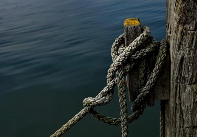 Tampen am Poller Heiligenhafen