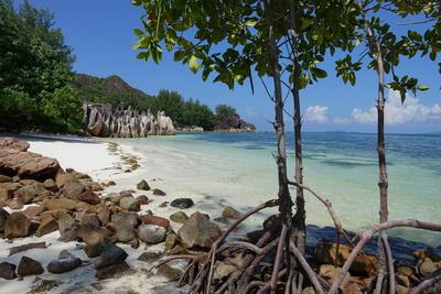 Traumstrand der Seychellen III