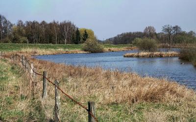Das Steinhorster Becken- mehr als nur Naturschutz
