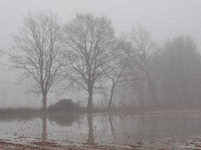 land unter im nebel
