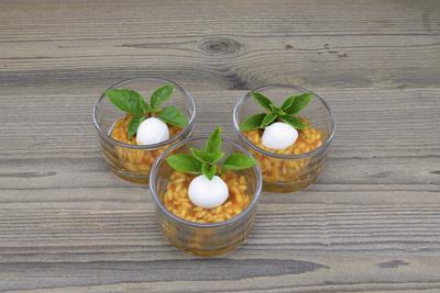 Büffelmozzarella auf Tomatenrisotto