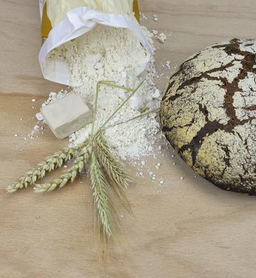 Brot, Brotlaib, Vollkornbrot