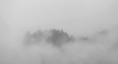 Winterlicher Nebel im Allgäu