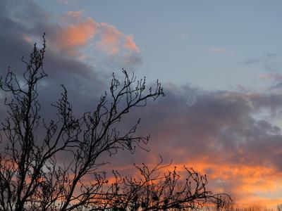 Sonnenuntergang am Abend