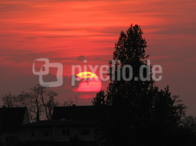 Sonnenuntergang in der Pfalz