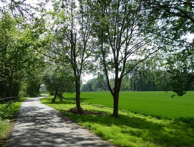 Niederrheinlandschaft