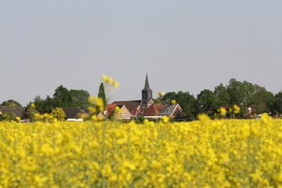 Dörfchen hinterm Rapsfeld