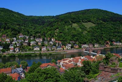 Neckar.Blick