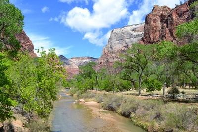 Zion nationalpark 2