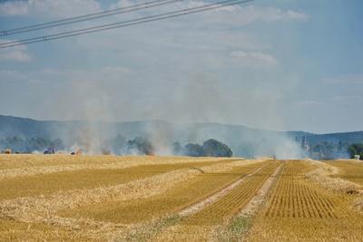 Flächenbrand auf einem Weizenfeld