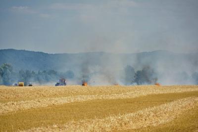 Flächenbrand durch Dürre