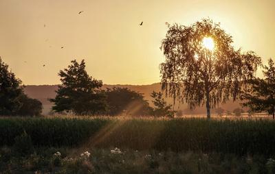Ein neuer Sonnen-Tag