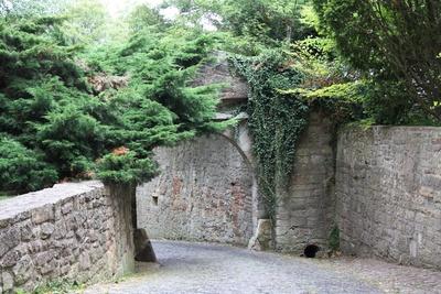 Romantischer Gang zum Schloss