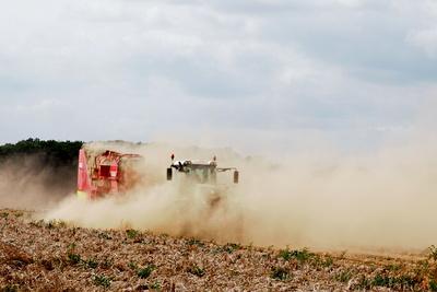 kartoffelernte in niedersachsen