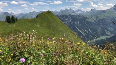 Fellhorn - Allgäuer Alpen
