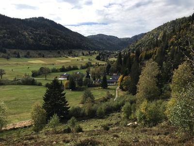 Geißpfad im Schwarzwald