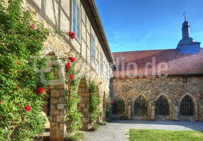 Kloster Michaelstein - Rosen