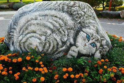 Katzen-Stein