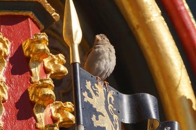 Ritter Spatz vom Schönen Brunnen