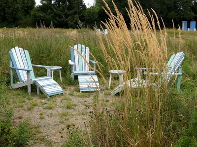 Ruheplatz in der Bienenwiese