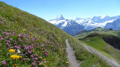Geschmückter Bergweg