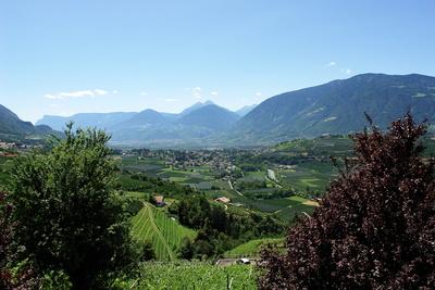 sonniger Blick ins Trentino