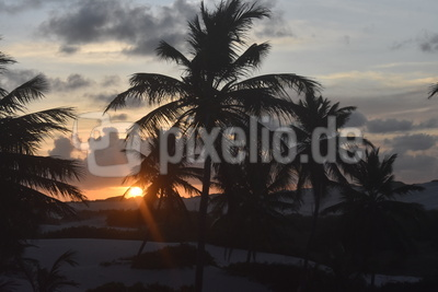 Sonnenuntergang in den Tropen vor Palmen am Sandstrand