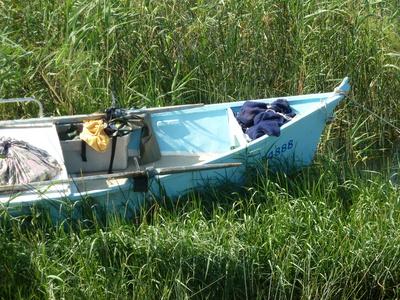 Fischerboot im Schilf