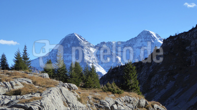 Eigernordwand und Jungfrau