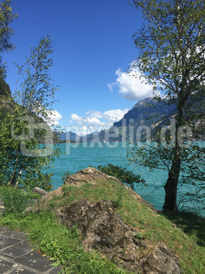 Am Weg der Schweiz