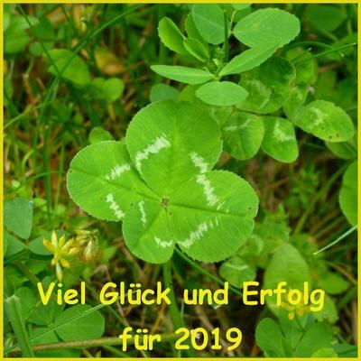 Viel Glück für 2019