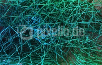 Fischernetz auf Fehmarn