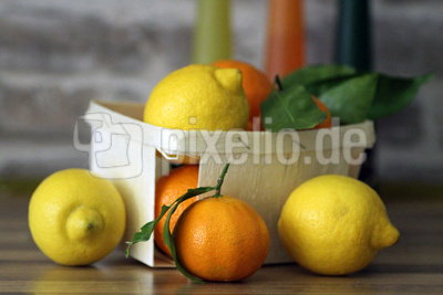 Zitrusfrüchte 1