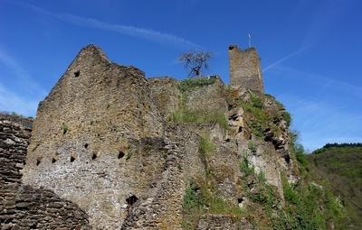 Ruine Burg Manderscheid