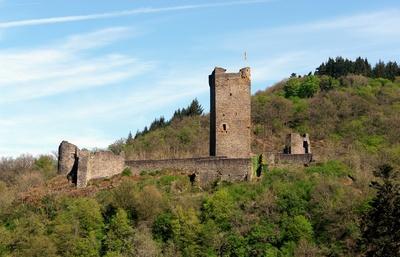 Ruine Burg Manderscheid #4