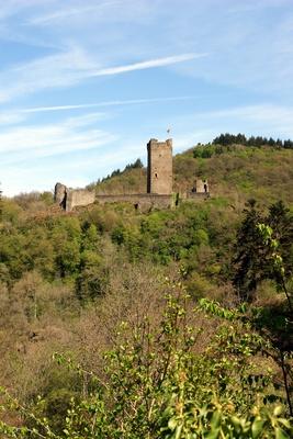 Ruine Burg Manderscheid #5
