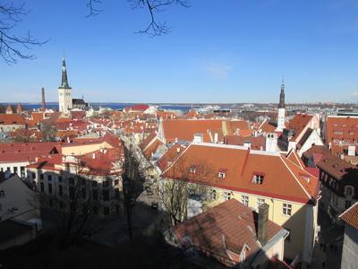 Tallinn - Blick vom Domberg auf die Unterstadt