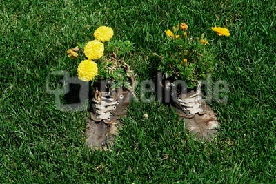 Schuhfetischismus #2